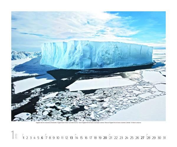 Eiswelten 2019